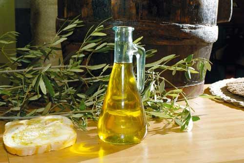 Olio di oliva: bassa produzione e scarsa valorizzazione.  Le proposte di Agrinsieme per uscire dalla crisi.
